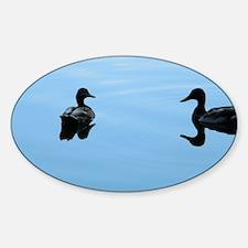 Duck romance Sticker (Oval)