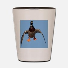 Cupped Wings Duck D1232-076 Shot Glass