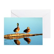 Ducks at sunset Greeting Card