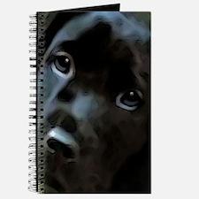 black lab Journal