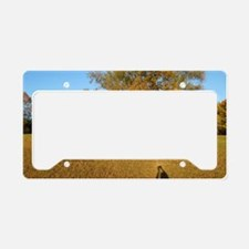 Shadow on meadow License Plate Holder