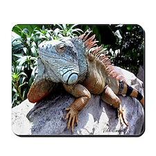 Iguana Talk! Mousepad