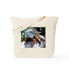 Iguana Talk! Book Bag