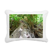 Frog on a log Rectangular Canvas Pillow