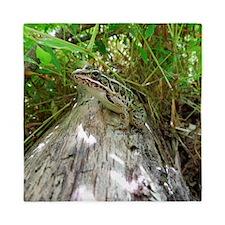 Frog on a log Queen Duvet