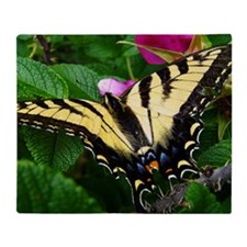 Resting Swallowtail Butterfly Throw Blanket