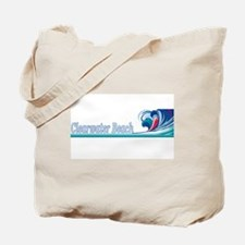 Clearwater Beach, Florida Tote Bag