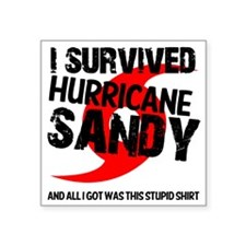 "i survived hurricane sandy Square Sticker 3"" x 3"""