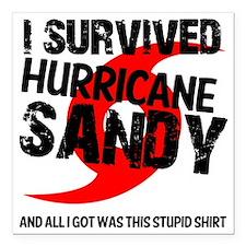 "i survived hurricane san Square Car Magnet 3"" x 3"""