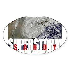 Superstorm Sandy Survivor Decal