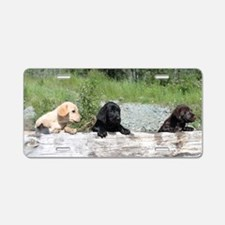 3 Lab pups Aluminum License Plate