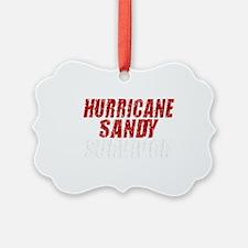 Hurricane Sandy Survivor Ornament