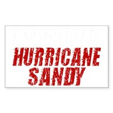I Survived Hurricane Sandy Dis Decal