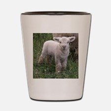 Cute Babydoll Lamb Shot Glass