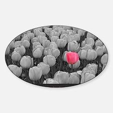 I Believe In Pink Sticker (Oval)