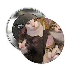 "flipflopcats 2.25"" Button"