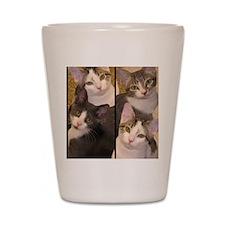 flipflopcats Shot Glass