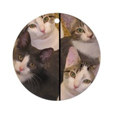 flipflopcats Round Ornament