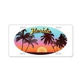 Daytona beach florida License Plates