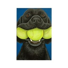 Black Lab with 3 tennis balls Rectangle Magnet
