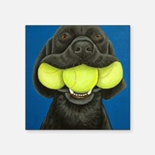 "Black Lab with 3 tennis bal Square Sticker 3"" x 3"""
