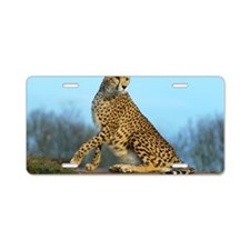 Cheetah Looking Alert Aluminum License Plate