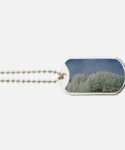 Frosted Clearing Dog Tags