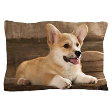 Cardigan Welsh Corgi Pillow Case