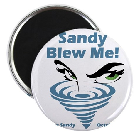 Sandy Blew Me Magnet