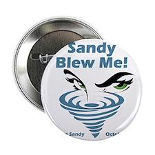 """Sandy Blew Me 2.25"""" Button"""