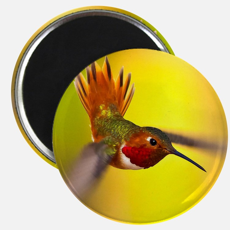 World of Hummingbirds .com - January Magnet