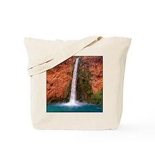 Mooney Falls and Pool Tote Bag