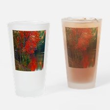 Rope Swings Fall View Drinking Glass