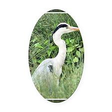 Heron5 Oval Car Magnet
