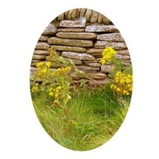 Orkney Wall Oval Ornament