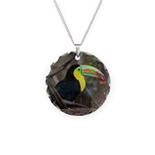 Keel-Billed Toucan Necklace Circle Charm