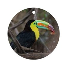 Keel-Billed Toucan Round Ornament