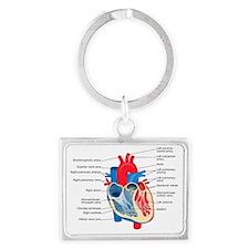 Heart Diagram Landscape Keychain