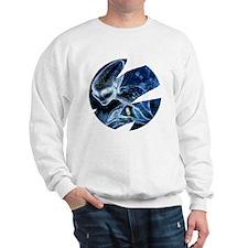Phiragna 7 Sweatshirt
