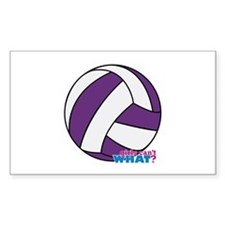 Purple Volleyball Decal