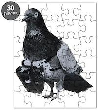 Spy Pigeon Puzzle