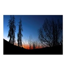 Colorado Sunset Postcards (Package of 8)