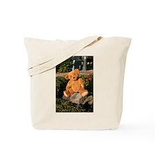 Teddyscapades Tote Bag