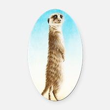 Meerkat Slider Case Oval Car Magnet