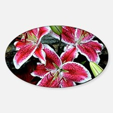 Lilly Explosion Decal