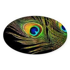 Peacock Feathers Decal