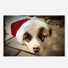 Christmas Pyrenees Postcards (Package of 8)
