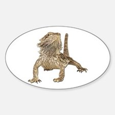 Bearded Dragon Photo Oval Decal
