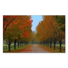 Dreamy Fall New England Drive Decal