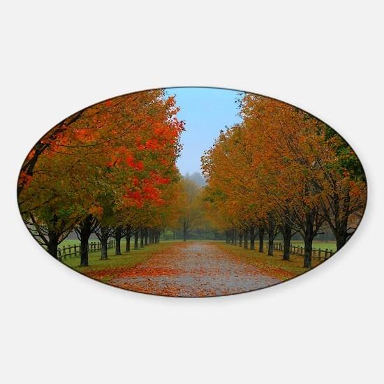Dreamy Fall New England Drive Sticker (Oval)